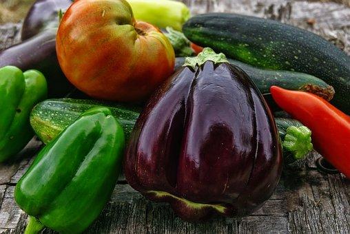 Légumes bio, récolte du jardin